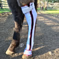 View all horseRAPs® - Fore-Leg Cold Therapy for Horses